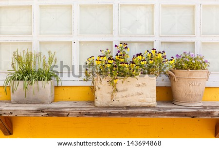 Window decorated with flower pots and flowers