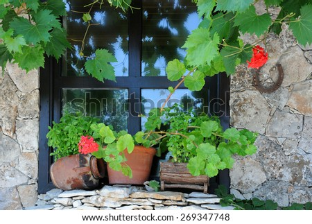 Window decorated with plants in the pots and vine in Bulgaria - stock photo