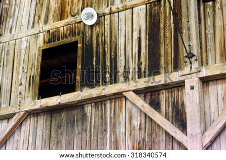 Window in the middle of the wood                   - stock photo