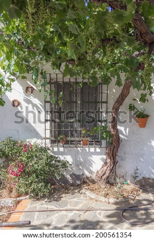 Window of a country house - stock photo