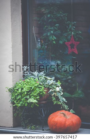 Window sill decorated with pumpkins and a flowerpot