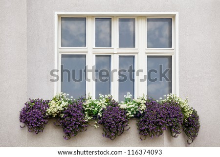 Window with a Sky Reflection and flowerpot outside in a european town