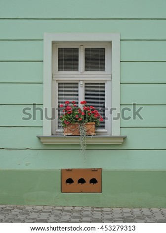 Window with flowers on green wall