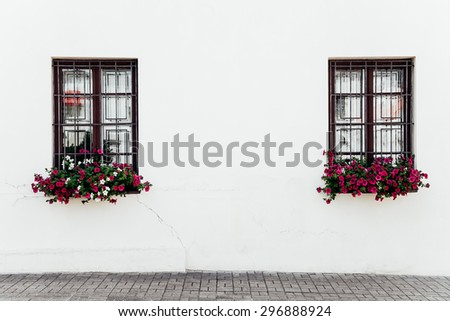 window with flowers on the wall of the white building