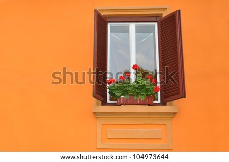window with flowers, Sighisoara, Romania