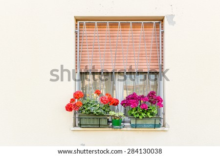 window with iron grating and flower pots: red and fuchsia geranium