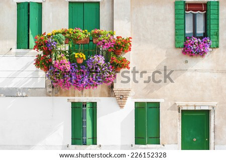 Windows with flowers in Venice, Italy. - stock photo