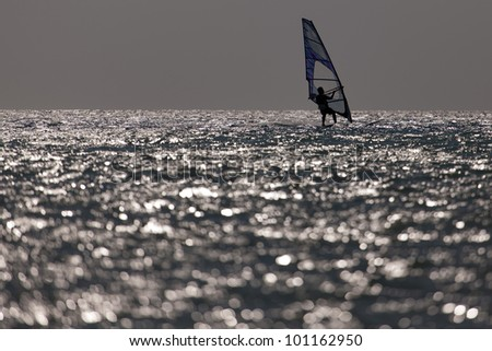 windsurfer panorama silhouette against a sparking blue sea