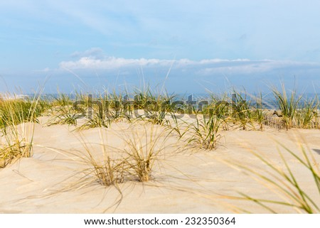 Windswept Atlantic Coast Shoreline at Cape Henlopen, Delaware. - stock photo