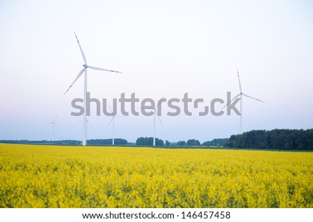 Windturbine farm at the sunset