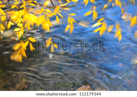 windy autumn leaves on river background - stock photo