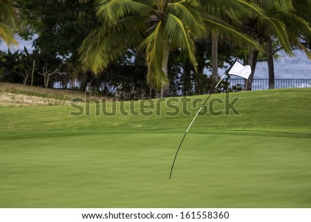 Windy Day for Golf - stock photo