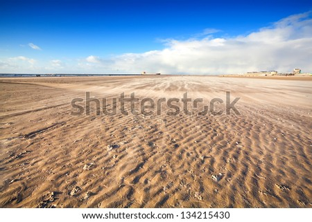 windy sand beach by North sea in Holland