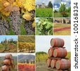wine agriculture collage made of images from Tuscany, Italy, Europe - stock photo