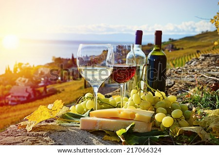 Wine and cheese. Lavaux region, Switzerland
