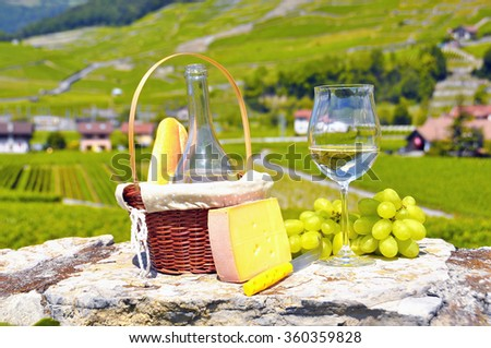 Wine and grapes - stock photo
