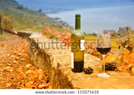 Wine and grapes against Geneva lake. Lavaux region, Switzerland  - stock photo