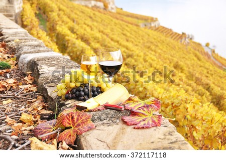 Wine and grapes on the terrace of vineyard in Lavaux region, Switzerland - stock photo