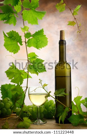 Wine and grapevine - stock photo