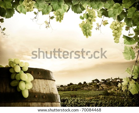 Wine barrel, grapes and vineyard in vintage style - stock photo