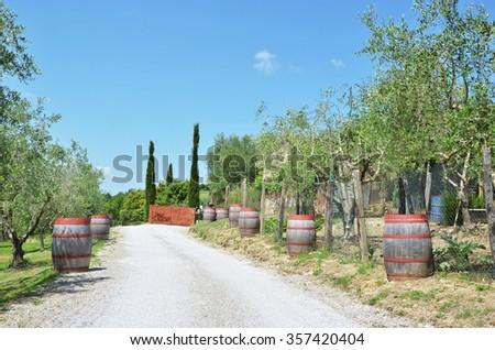 Wine barrels along rural Italian road - stock photo