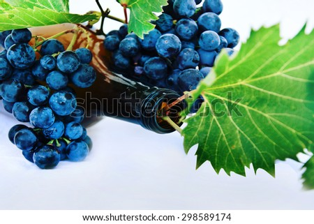 Wine bottle and grapes. - stock photo