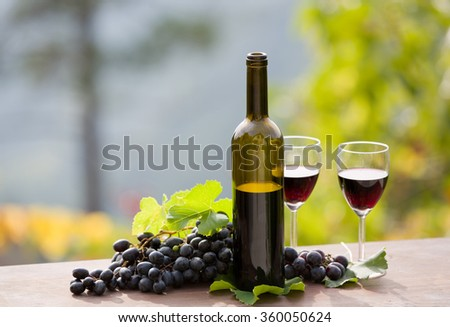 wine bottle and grapes on wooden table outdoor - stock photo