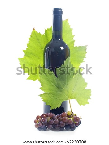 wine bottle and young grape vine branch isolated on a white background - stock photo