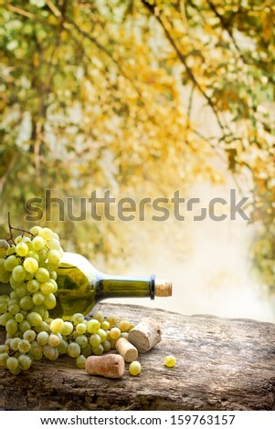 Wine bottle , grape and corks on wooden table on vineyard background/ summer wine background