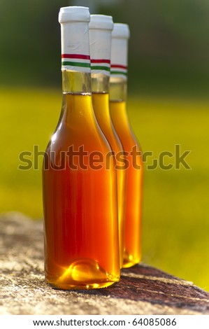 Wine bottle in sunshine on the table