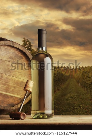 Wine bottle on vineyard background - stock photo