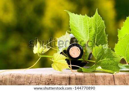 Wine bottle with wooden cork and big leaves around