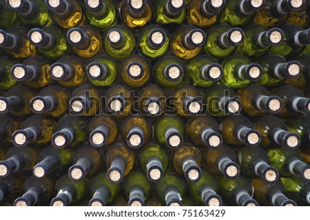 wine bottles arranged in a darkness wine cellar