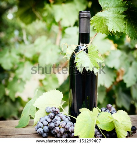Wine concept. Food and drink background with red wine, fresh bunch of grapes and wine bottle over nature background, toned