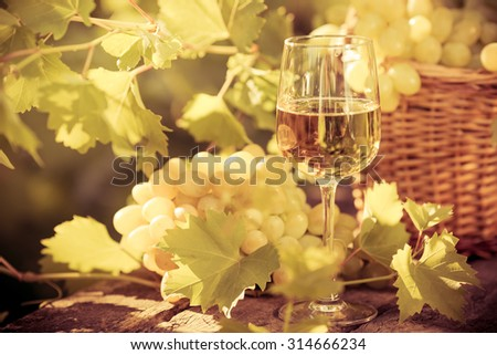 Wine glass and grapes of vine in autumn