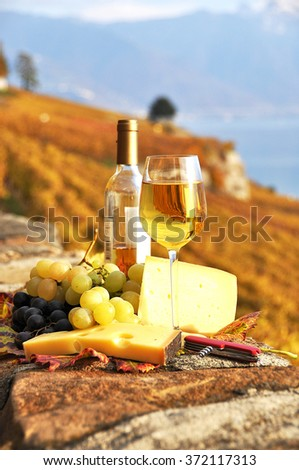 Wine, grapes and chesse on the terrace vineyard in Lavaux region, Switzerland