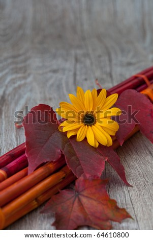 wine leaf  and flower on bamboo sticks