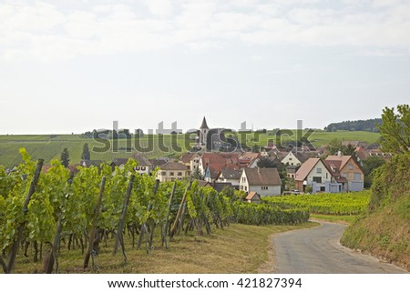 Wine Road in Alsace (wine) landscape (Hunawihr) - stock photo