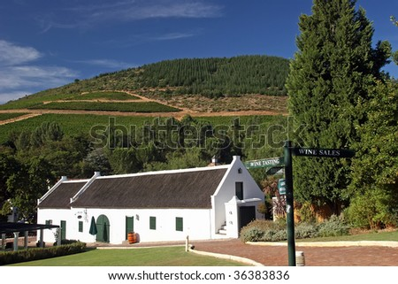 wine route - stock photo