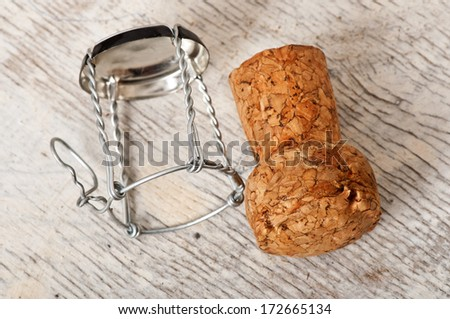 wine stopper against the background of an old tree - stock photo