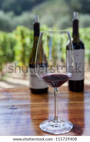 Wine tasting - stock photo