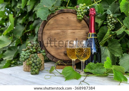 Wine with barrel on vineyard