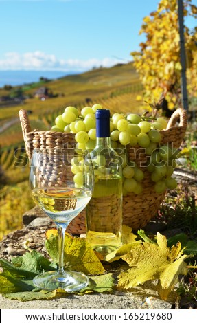 Wineglass and basket of grapes. Lavaux region, Switzerland
