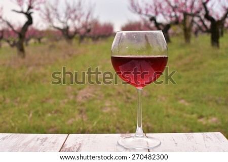 Wineglass with red wine on the table at the peach tree garden - stock photo