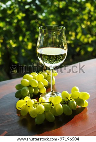 Wineglasses and bunch of grapes. Lavaux region, Switzerland