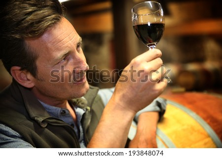 Winegrower in wine-cellar holding glass of wine - stock photo
