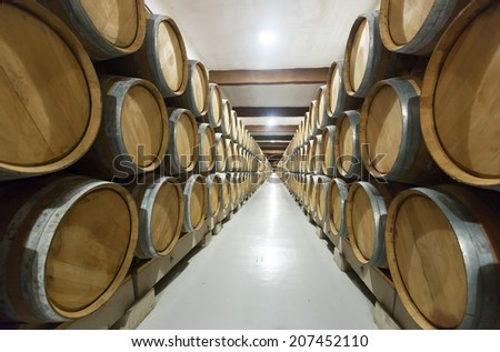 winery factory with many   barrels  - stock photo
