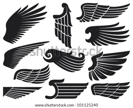 wings collection (set of wings) - stock photo