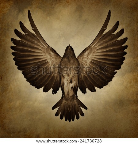 Wings of freedom on a grunge texture background as a breaking free and spirituality faith symbol as a bird with open spread feathers flying upward to success. - stock photo