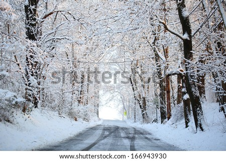 Winter alley with snow covered trees. Rays of the sun fall on frozen branches - stock photo